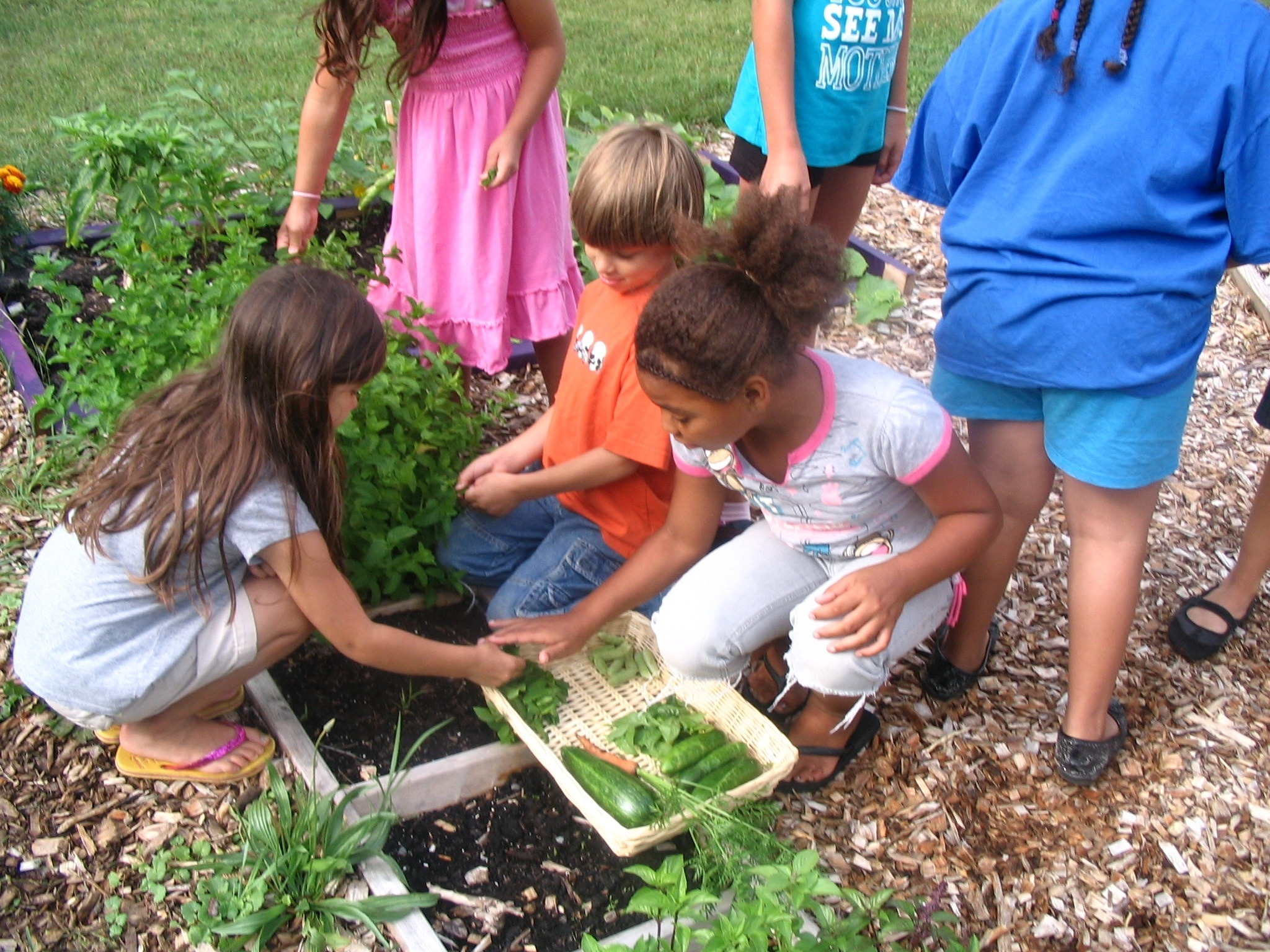 Nature Club Activities For Kids