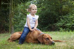 child a pet